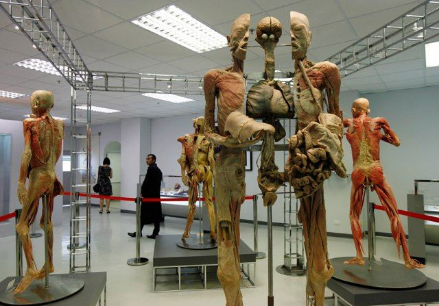 В Бангкоке есть самый ужасный музей в мире
